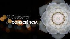 O Despertar da Consciência - Os 6 fundamentos para a vida espiritual