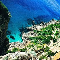 Reposting @digitalnomadsinlove: We could never get tired of this view, and all the colors of blue! #capri  #digitalnomadsinlove #digitalnomad #digitalnomadcouple #creativetravelcouples #wanderlust #travel #frequentflyer #workanywhere #seetheworld #locationindependent #remotework #instatravel #travelcouple #instago #travelgram #laptoplife #travelphotography #travelbug #workabroad #picoftheday #traveladdict #remoteworkers #nomads #traveldeeper #globecouples