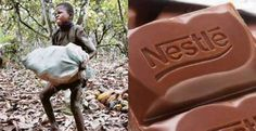 """https://www.facebook.com/photo.php?fbid=1022539057867951  the number of children working in the cocoa industry has increased by 51 percent from 2009 to 2014."""""""