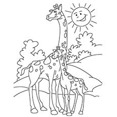 15 Printable Giraffe Coloring Pages for Adults Printable Giraffe Coloring Pages for Adults. 15 Printable Giraffe Coloring Pages for Adults. Free Printable Giraffe Coloring Pages for Kids Coloring For Kids Free, Zoo Animal Coloring Pages, Online Coloring Pages, Free Printable Coloring Pages, Coloring Book Pages, Dinosaur Coloring, Flamingo Coloring Page, Giraffe Colors, Giraffe Drawing