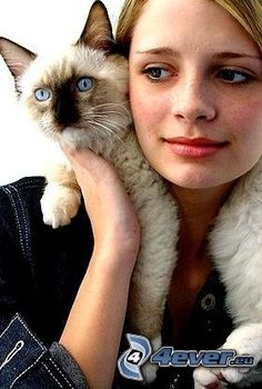 Celebrities with cats: Mischa Barton Siamese Cats, Cats And Kittens, Siamese Dream, Crazy Cat Lady, Crazy Cats, I Love Cats, Cool Cats, Celebrities With Cats, Animal Gato