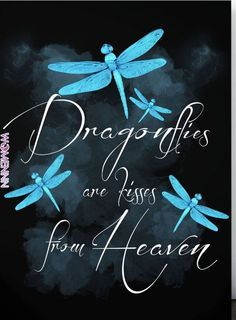 17 ideas for tattoo quotes love memories grief Dragonfly Quotes, Dragonfly Art, Dragonfly Meaning, Dragonfly Painting, Dragonfly Wallpaper, Dragonfly Images, Small Dragonfly Tattoo, Favorite Quotes, Positive Quotes