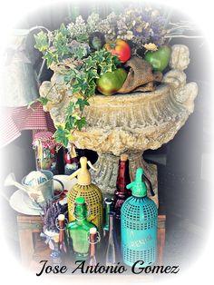 Bodegón de frutas y plantas...!!