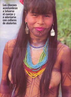 CHOCOES INDÍGENAS Desde la llegada de Colón a Panamá han discurrido más de mil años…un tiempo enorme que parece no haber modificado los hábitos de vida de muchas de las comunidades indígenas que habitan en las márgenes del río Chagres.