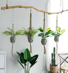 Cozy Hanging Plant Decor Ideas To For Your Garden 23 Terrarium Diy, Hanging Planters, Hanging Baskets, Succulent Hanging Planter, Planter Garden, Hanging Terrarium, Diy Planters, Herb Garden, Planter Pots