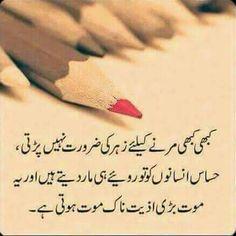 Post: Engr. Hashim Siddiqui