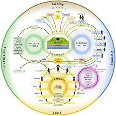 Mapping Our Food System - Circles Within Circles  Gail Nickel-Kailing, May 31st, 2012    Our Food System (Click on the image for a larger view.)    Today's food system is made up of four interconnected components: agriculture, the economy the social/political system, and the environment. As inputs, outputs, products, and labor move through these networks, each is intimately linked and influenced by the other.