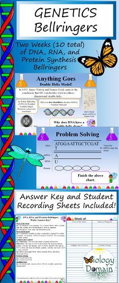 42 best Biology Bell Ringers images on Pinterest | Classroom, School ...