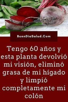 Tengo 60 años y esta planta devolvió mi visión, eliminó grasa de mi hígado y limpió completamente mi colón. #MejorarVisión #EliminarGrasa #CuidarHígado #LimpiarColon