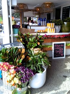 The Boathouse Shelly Beach www.mysydneylife.com.au @theboathousepb