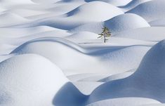 2013 National Geographic Traveler Photo Contest - In Focus - The Atlantic