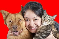 What % Cat Person And What % Dog Person Are You?