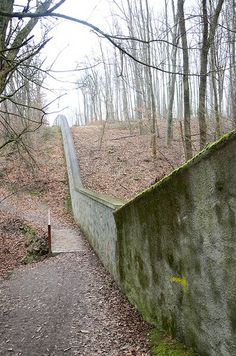 Lainzer Tiergarten (1st try)