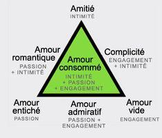 """La """"théorie triangulaire de l'amour"""" du psychologue Robert Sternberg. Elle pose trois entités différentes qui peuvent, seules ou combinées, expliquer sept grands types de relations amoureuses. La passion (l'attraction physique et le désir sexuel); l'intimité (le sentiment de proximité et de lien de confiance mû par l'échange de confidences) et l'engagement (l'intention partagée de construire et de maintenir une relation à long terme avec l'autre). voir lecerveau.mcgill.ca"""