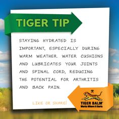 #TigerTip: Staying hydrated is important, especially during warm weather. Water cushions and lubricates your joints and spinal cord, reducing the potential for #arthritis and #backpain.