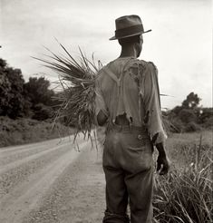"""July 1936. """"Old-time Negro living on a cotton patch near Vicksburg, Mississippi."""""""