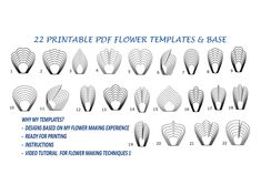 Printable Paper Flower Template, Printable Flower Templates, Flower Template, Giant Paper Flower Template, Flower Petal Template by MaiPaperFlowers on Etsy Large Paper Flower Template, Flower Petal Template, Paper Flower Patterns, Flower Svg, Large Paper Flowers, Leaf Template, Paper Flower Tutorial, Paper Flower Wall, Flower Petals