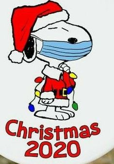 Cover your freakin' nose!!! Snoopy Cartoon, Peanuts Cartoon, Peanuts Snoopy, Charlie Brown Quotes, Charlie Brown And Snoopy, Charlie Brown Christmas Quotes, Snoopy Images, Snoopy Pictures, Christmas Blessings