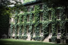 Et voila - l'Ivy League avec du vrais Ivy! Princeton - and cool Ivy wall… Abandoned Houses, Old Houses, Porches, Beautiful Homes, Beautiful Places, Wonderful Places, Green Facade, Secret House, Ivy Plants