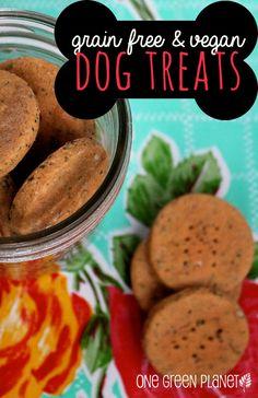 Grain Free and Vegan Peanut Butter Dog Treats http://onegr.pl/1hkuKlu #vegan #veganpets