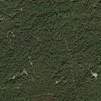 vierhouten plaggenweg - Google zoeken