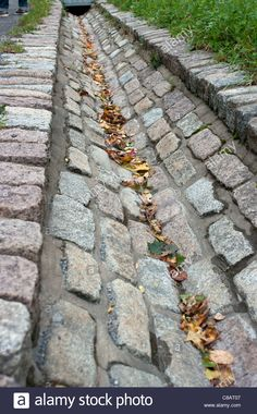 Water drain made of stones at Mount Royal park, Montreal, Quebec, Canada Stock Photo Backyard Drainage, Large Backyard Landscaping, Driveway Landscaping, Driveway Drain, Runoff Water, Permaculture, Country Fences, Drainage Solutions, French Drain