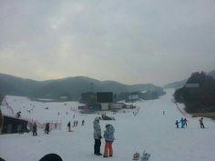Phoenix park Korea