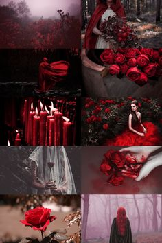 "skcgsra: "" red rose witch aesthetic (requested) more here // request here """