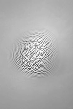 Loris Cecchini, walls seem to open doors to an unknown dimension. In his world, white walls undulate like a water drop's echo that the artist interprets as wall-wave vibrations. An hypnotic work to discover in the following.
