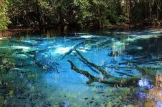 KB 05 Krabi Emerald Pool & Hot Stream Waterfall Tour ( Unseen Thailand) www.thailifetouring.com