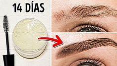 Traemos para ti 10 trucos sencillos que harán que tus cejas se vean espectaculares, crezcan bellas y con buena forma en pocos días, así que toma nota.