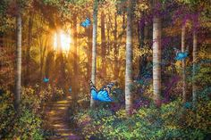 Forest Trail with Butterflies - Fototapeter & Tapeter - Photowall