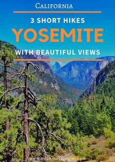 Minnesota Yogini - Yosemite National Park - Three Short Hikes with Beautiful Views - Minnesota Yogini