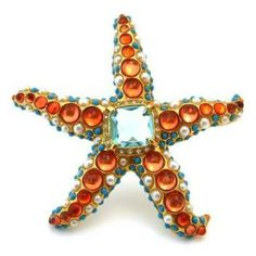 STARFISH - Healing and regeneration