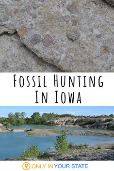 If you're fascinated by our prehistoric past, check out this amazing fossil park in Iowa! Best Beaches To Visit, Places To Visit, Japanese Language, Spanish Language, French Language, Fossil Hunting, Rock Hunting, Prehistoric, Fossils