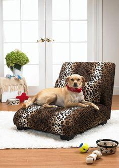 fancy dog chaise lounge #ideeli @ideeli