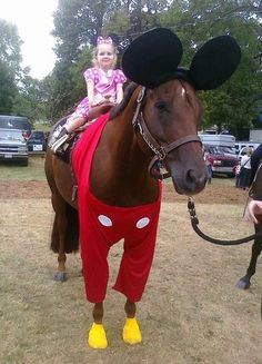 Minnie and Mickey Mouse horse costume. Dress your American Quarter Horse up and send us a picture of your creative horse costume ideas! Horse Halloween Ideas, Horse Halloween Costumes, Animal Costumes, Pet Costumes, Diy Halloween, Horse Fancy Dress, Funny Horses, Pet Day, Costume Contest