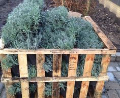Lavender crate - all the things that make me….. me