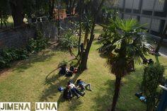 TÍTULO DE LA OBRA: Mi escuela. AUTOR: Jimena Luna.  FECHA DE REALIZACIÓN:24/nov/15 APERTURA DE DIAFRAGMA: F9 VELOCIDAD DE OBTURACIÓN: 1/320 ISO: 200