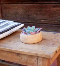 Small Cork Planter by Melanie Abrantes Designs on Scoutmob Shoppe