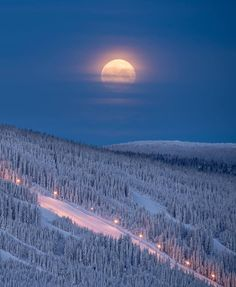 Full moon magic in Trysil 💙🌕 Photo by Winter Szenen, Winter Moon, Winter Magic, Beautiful Moon, Beautiful Places, Image Nature, Shoot The Moon, Snow Scenes, Lofoten