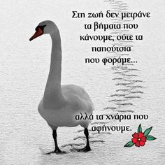 Greek Quotes, Narcissist, Wise Words, Wish, Clever, Letters, Messages, Thoughts, Greek