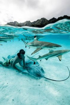The Complete Nassau, Bahamas Travel Guide - Find Us Lost Beautiful Places To Travel, Cool Places To Visit, Places To Go, Best Honeymoon Destinations, Dream Vacations, Romantic Vacations, Travel Destinations, Underwater Photography, Travel Photography