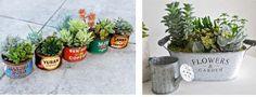 タニク 寄せ植え8 Planting Succulents, Planter Pots, Garden, Flowers, Succulents, Garten, Lawn And Garden, Gardens, Gardening