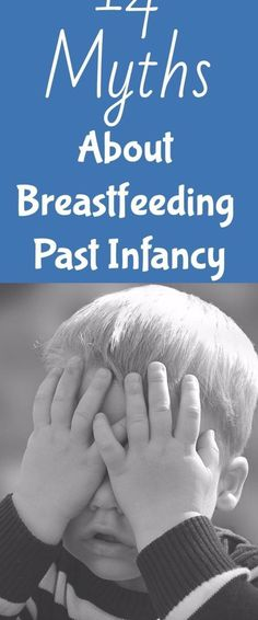 14 Myths about Extended Breastfeeding Breastfeeding Toddlers, Extended Breastfeeding, Parenting Fail, Foster Parenting, Age Appropriate Chores For Kids, Raising Twins, Natural Parenting, Attachment Parenting, Infancy