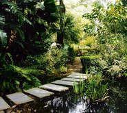 Stellenbosch University Botanic Garden