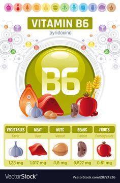 Pyridoxine vitamin rich food icons healthy vector image on VectorStock Liquid Vitamins, Vitamins And Minerals, Macro Nutrients Calculator, Vitamin B6 Foods, B6 Vitamin Benefits, Health And Nutrition, Health Tips, Health Benefits, Vitamine B6