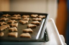 Coconut Oil Minty Fresh Dog Biscuits