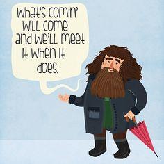 Hagrid knows best!