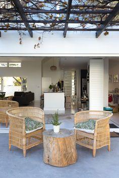 Stokperd | The Gallarelli Home